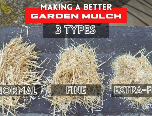 How to Make the BEST GARDEN MULCH ( Great for Raised Beds, Field Beds)