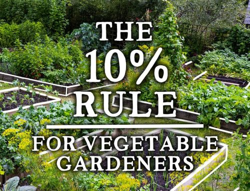 """The Incredible """"10% Rule"""" That Every Gardener Should Use 